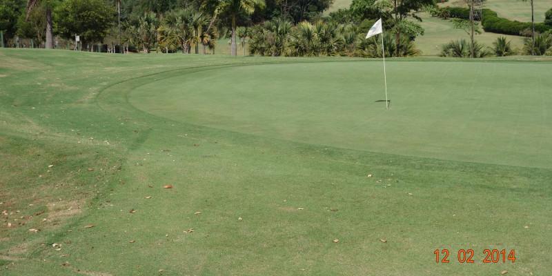 Ipê Golf Club - Ribeirão Preto - SP