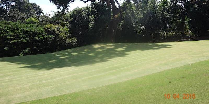 Maringá Golf Club - Maringá - PR.
